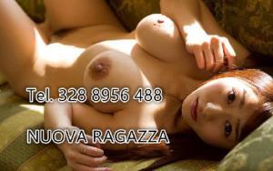 380755203-310.jpg